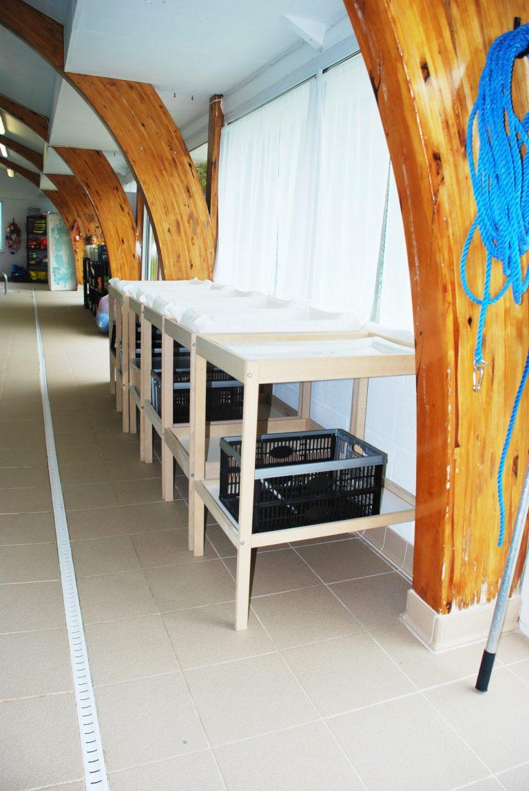 Baby changing facilities at St Francis Swimming Pool